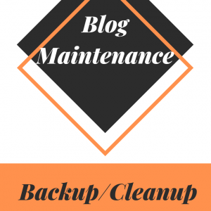 Blog Maintenance