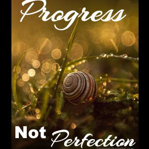 ProgressNotPerfectionTB